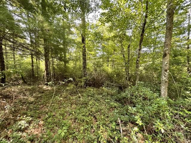 Indian Rock Tr, Jamestown, TN 38556 (#1161434) :: Cindy Kraus Group | Realty Executives Associates