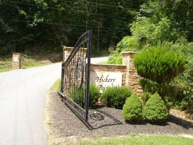 Lot 3 Hickory Pointe Ln, Maynardville, TN 37807 (#1161523) :: Realty Executives Associates