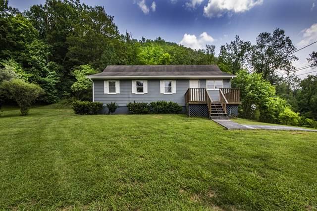 5316 E Raccoon Valley Drive, Knoxville, TN 37938 (#1161539) :: Realty Executives Associates