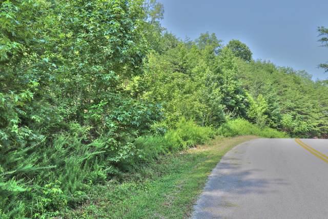 Lot 307 Bluegreen Way, Rockwood, TN 37854 (#1161576) :: Tennessee Elite Realty