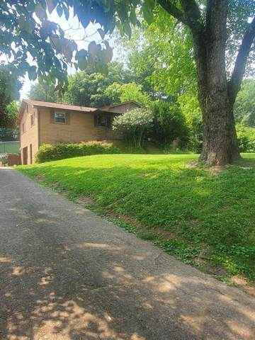 6617 Wachese Lane, Knoxville, TN 37912 (#1161644) :: Shannon Foster Boline Group