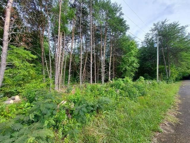 2.4 Acres Grazeland Drive, Morristown, TN 37814 (#1161681) :: Cindy Kraus Group | Realty Executives Associates