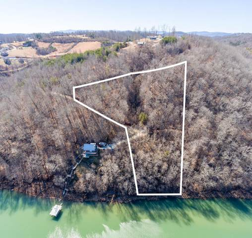 Mariner Point Rd, LaFollette, TN 37766 (#1161780) :: Cindy Kraus Group | Realty Executives Associates