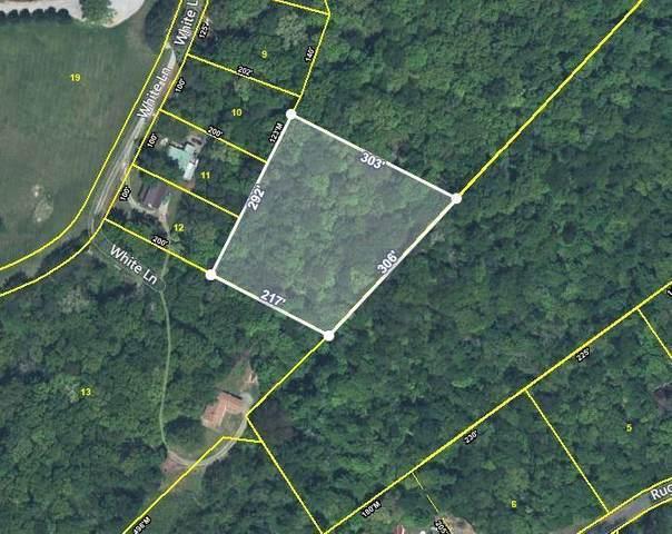 White Lane, Bean Station, TN 37708 (#1161790) :: Cindy Kraus Group | Realty Executives Associates