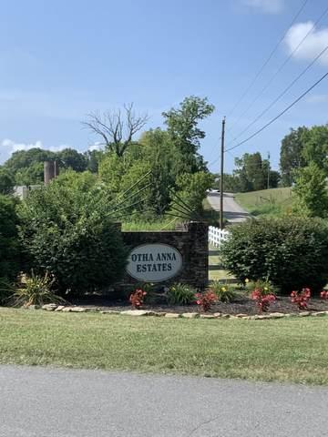938 Otha Lane, Walland, TN 37886 (#1161824) :: Shannon Foster Boline Group