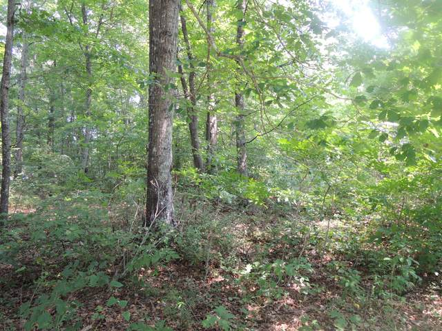 Foxwood Dr, Crossville, TN 38571 (#1161854) :: Billy Houston Group
