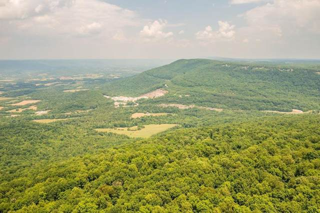 Rigsby Gap Rd, Pikeville, TN 37367 (#1161862) :: Realty Executives Associates