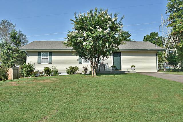 6100 Cougar Drive, Knoxville, TN 37921 (#1161877) :: Billy Houston Group