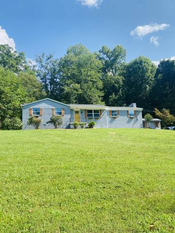 6904 Rising Rd, Knoxville, TN 37924 (#1161878) :: Billy Houston Group