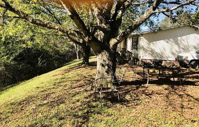 1019 Ferguson Ridge Rd, Tazewell, TN 37879 (#1161897) :: Realty Executives Associates
