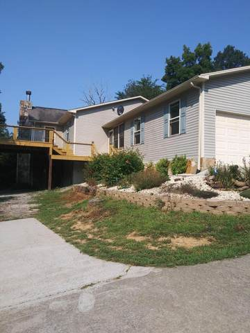 7749 Mcmillan Rd, Knoxville, TN 37914 (#1161905) :: Billy Houston Group