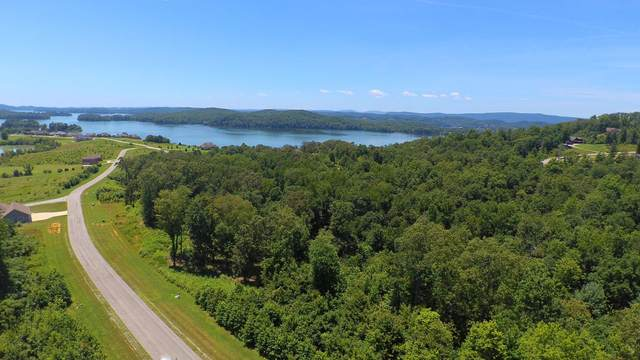 424 Water View Drive, Rockwood, TN 37854 (#1161909) :: A+ Team