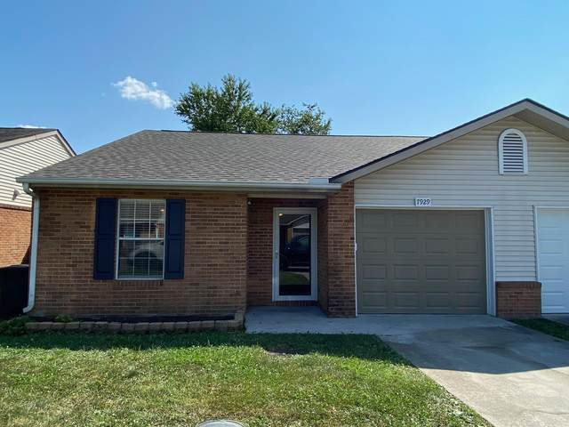 7929 Dighton Way, Powell, TN 37849 (#1161973) :: The Cook Team