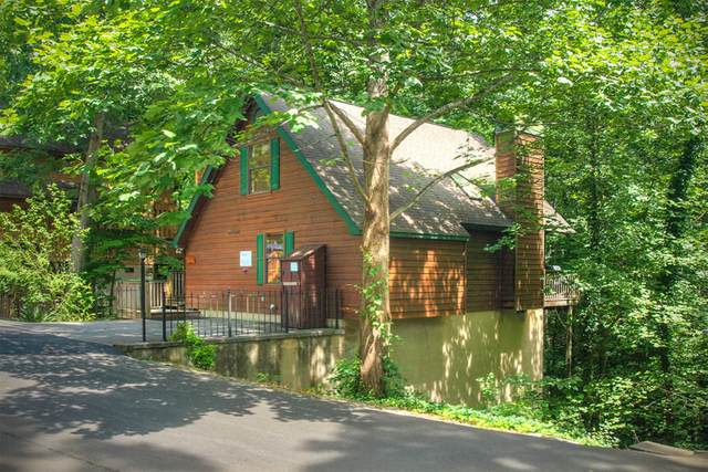 317 Greenwood Way, Pigeon Forge, TN 37863 (#1162022) :: Cindy Kraus Group | Realty Executives Associates