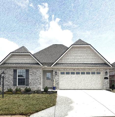 205 Sand Hills Drive, Maryville, TN 37801 (#1162030) :: Shannon Foster Boline Group