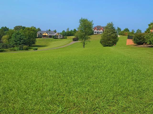 1561 Mint Meadows Drive, Maryville, TN 37803 (#1162086) :: Shannon Foster Boline Group