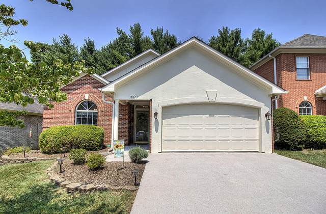 8823 Lennox View, Knoxville, TN 37923 (#1162117) :: Billy Houston Group