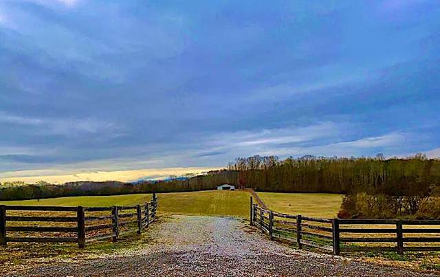 0 W Old Andrew Johnson Hwy, New Market, TN 37820 (#1162144) :: Cindy Kraus Group   Realty Executives Associates