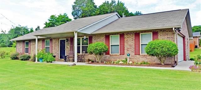 4801 Katia Lane, Knoxville, TN 37938 (#1162173) :: Realty Executives Associates