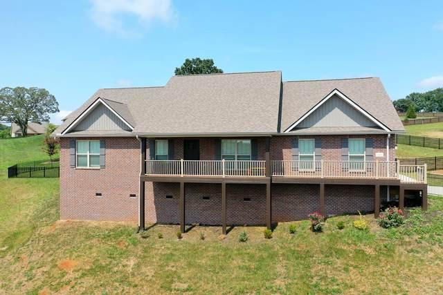 1423 Sally View Drive, Friendsville, TN 37737 (#1162197) :: Catrina Foster Group