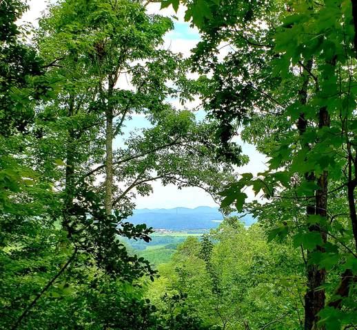 Lake Heights Road, Tellico Plains, TN 37385 (#1162206) :: Cindy Kraus Group | Realty Executives Associates