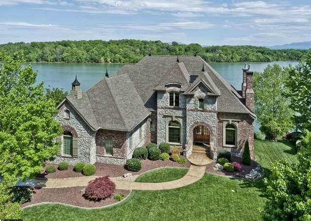 195 Rock Point Drive, Vonore, TN 37885 (#1162222) :: Catrina Foster Group