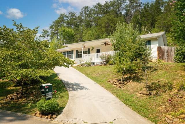 918 Hill Hollow Drive, Sevierville, TN 37876 (#1162284) :: The Terrell-Drager Team