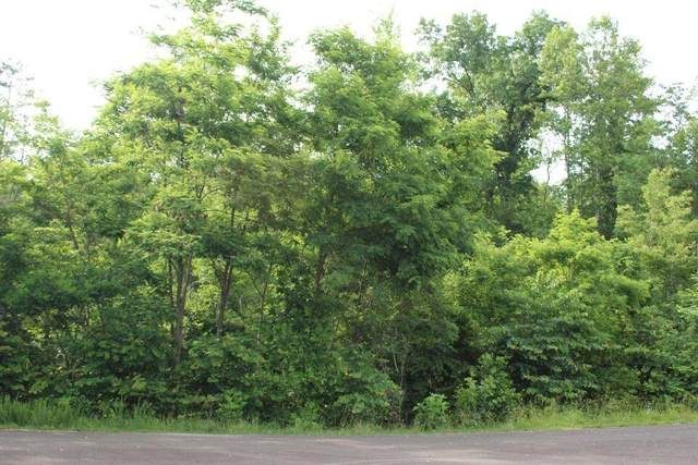 Graphite Court, New Tazewell, TN 37825 (#1162328) :: Realty Executives Associates