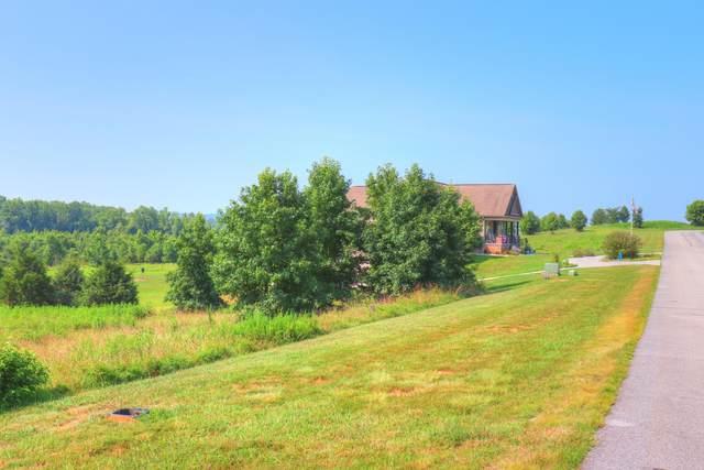 Lot 462 Water View Drive, Rockwood, TN 37854 (#1162346) :: A+ Team