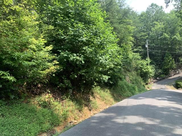 LT 38 Sunshine Tr, Gatlinburg, TN 37738 (#1162455) :: Tennessee Elite Realty