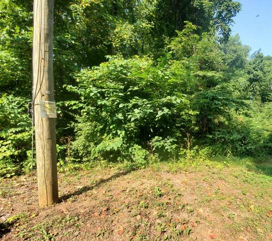 Lot 61 Twin City Way, Pigeon Forge, TN 37863 (#1162493) :: The Cook Team