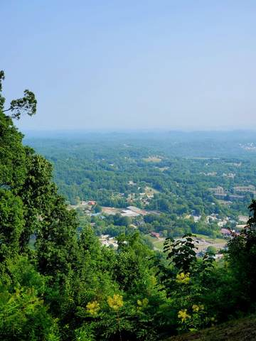 Lot 60 Twin City Way, Pigeon Forge, TN 37863 (#1162496) :: The Cook Team