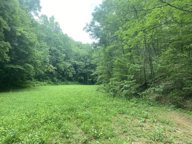 Lightfoot Way, Sevierville, TN 37862 (#1162517) :: Tennessee Elite Realty