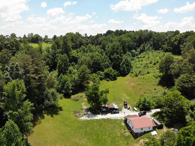 795 Ivey Hollow Rd, LaFollette, TN 37766 (#1162578) :: Catrina Foster Group
