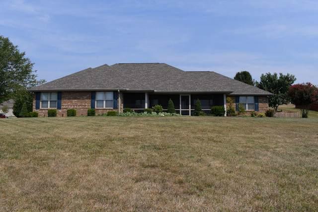 132 Illinois Ave, Seymour, TN 37865 (#1162580) :: Catrina Foster Group
