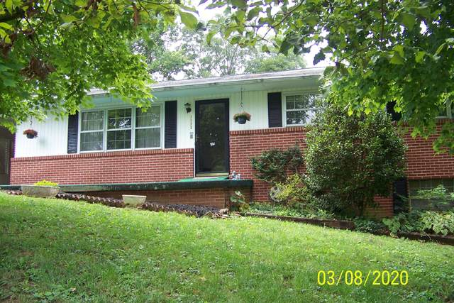 1173 Mountain View Drive, New Market, TN 37820 (#1162785) :: The Cook Team