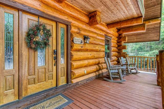 439 Coyote Rd, Gatlinburg, TN 37738 (#1162862) :: JET Real Estate