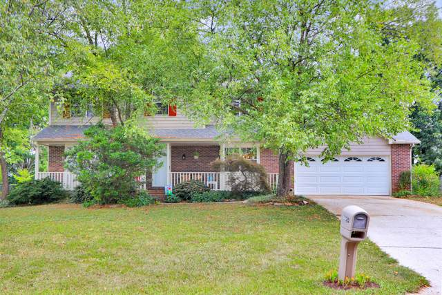1120 Buxton Drive, Knoxville, TN 37922 (#1162901) :: A+ Team
