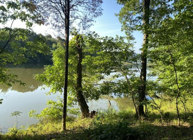 4176 Lake Drive, Loudon, TN 37774 (#1162971) :: Billy Houston Group