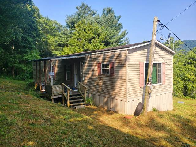 103 Stickley Hollow Drive, Rose Hill, VA 24281 (#1163023) :: Billy Houston Group