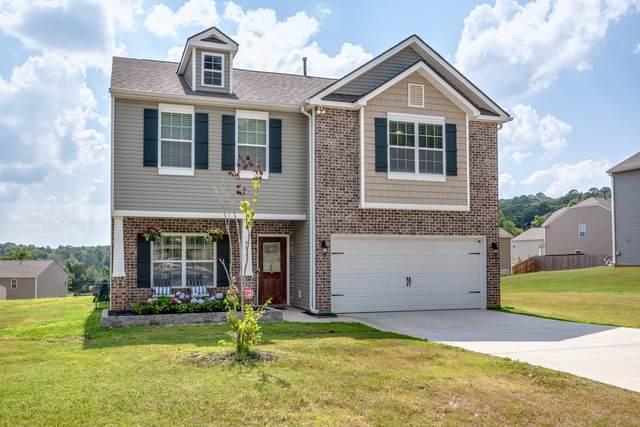 4815 Birchcrest Lane, Knoxville, TN 37918 (#1163107) :: Shannon Foster Boline Group