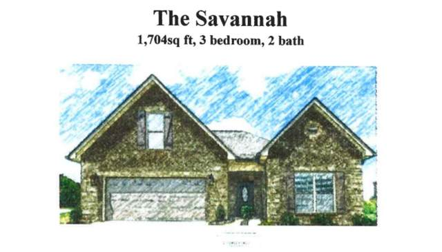 230 Sand Hills Drive, Maryville, TN 37801 (#1163159) :: Shannon Foster Boline Group