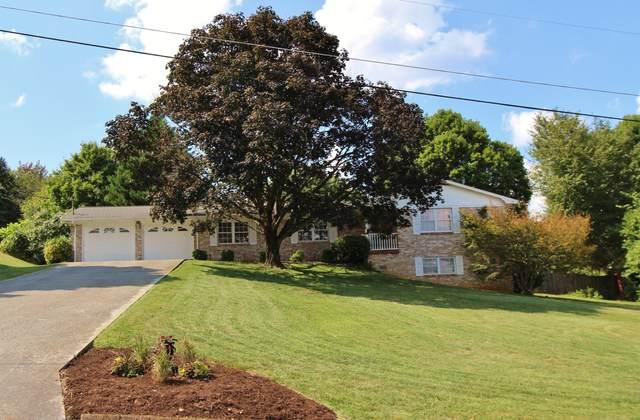 3913 Arline Drive, Knoxville, TN 37938 (#1163176) :: Realty Executives Associates