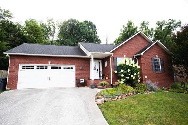 2330 Sunnywood Lane, Knoxville, TN 37912 (#1163199) :: Realty Executives Associates