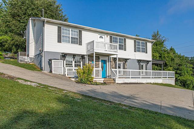 6442 Western Ave, Knoxville, TN 37921 (#1163224) :: Billy Houston Group