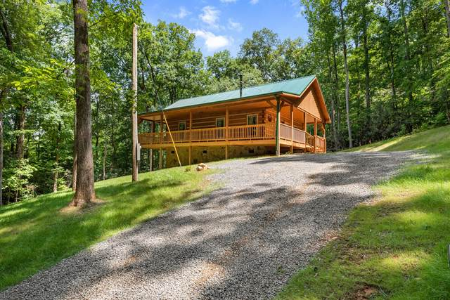 3393 Grand Country Dr Drive, Cosby, TN 37722 (#1163262) :: Shannon Foster Boline Group
