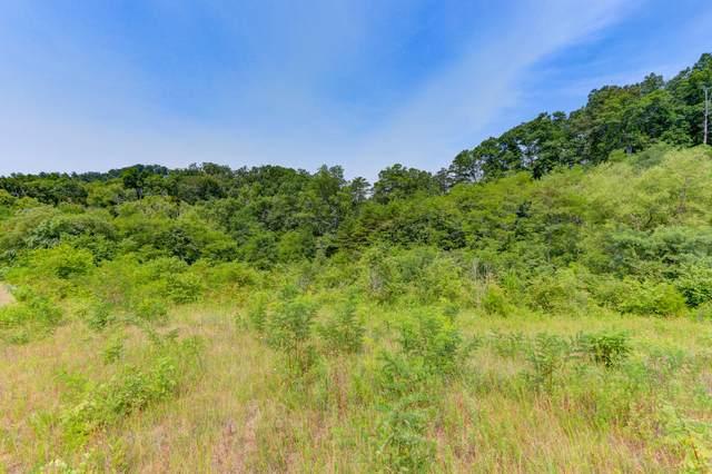 Indian Creek & Sandy Ridge, Dandridge, TN 37725 (#1163404) :: Shannon Foster Boline Group