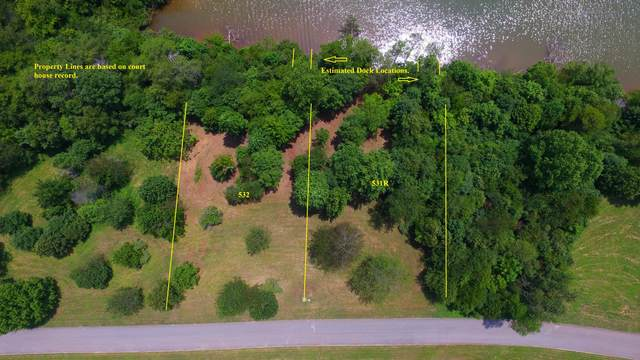 460 Marsh Hawk Drive Drive, Vonore, TN 37885 (#1163409) :: Realty Executives Associates