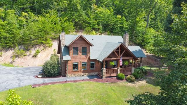 616 Wildcat Hollow Rd, New Tazewell, TN 37825 (#1163427) :: JET Real Estate