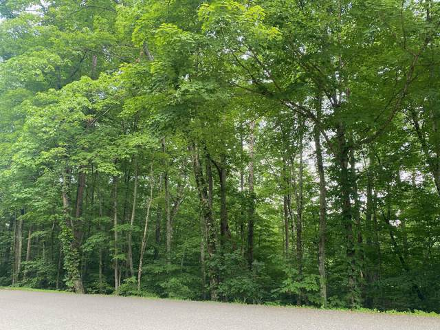 Cove Norris Rd, Caryville, TN 37714 (#1163717) :: Catrina Foster Group